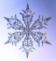 01_snowflake_1